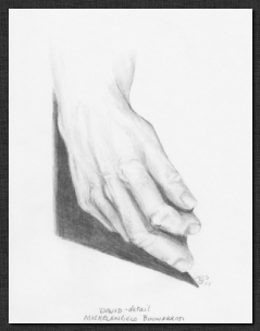 Study David-detail